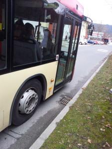 Foto: STW Bus hält an Wiese.