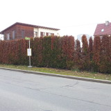 Foto: Grüne Haltestelle STW Klagenfurt